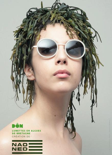 lunettes en algue