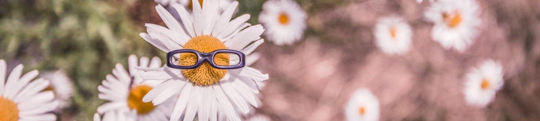 partenariat lunettes