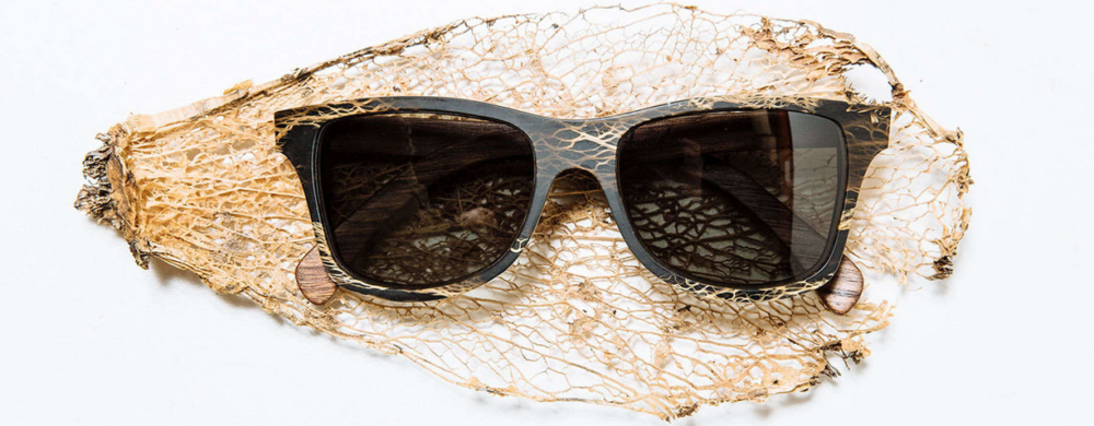 lunettes bois et cactus