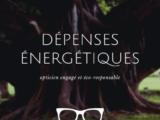 maitrises ses dépenses energetiques